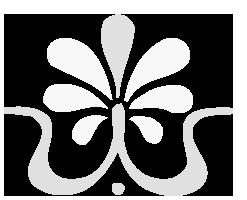 Shiatsu Verhoef logo