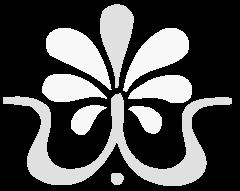 Do-In Yoga & Shiatsu Verhoef